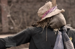 Scarecrow2sign